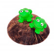 Toy frogs — Stock Photo