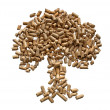Stock Photo: Pellets tree.