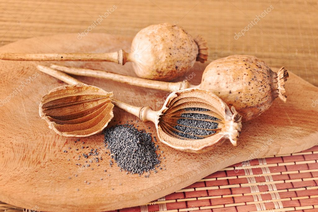Penetrated head poppy and poppy seeds. Kitchen Still Life. — Stock Photo #5148983