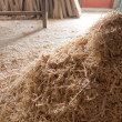 Sawdust — Stock Photo #4042922