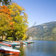 Zell am See — Stockfoto