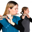 Royalty-Free Stock Photo: Transverse flute