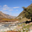 Mountains river and trees - Stock Photo