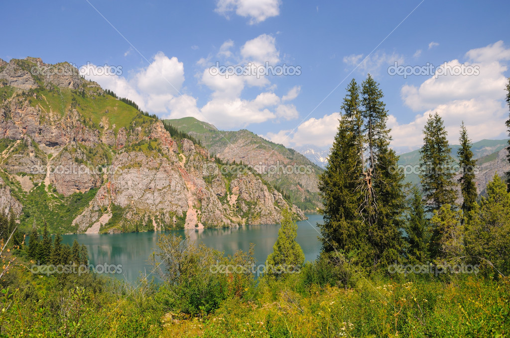 Colorful Sary-Chelek Lake, mountains, meadows and fur tree  Foto Stock #4152653