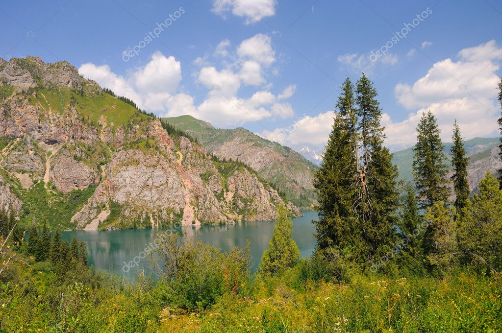 Colorful Sary-Chelek Lake, mountains, meadows and fur tree — Stockfoto #4152653