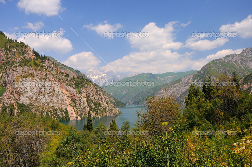 Colorful Sary-Chelek Lake, mountains, meadows and fur tree — Stock Photo #4152691
