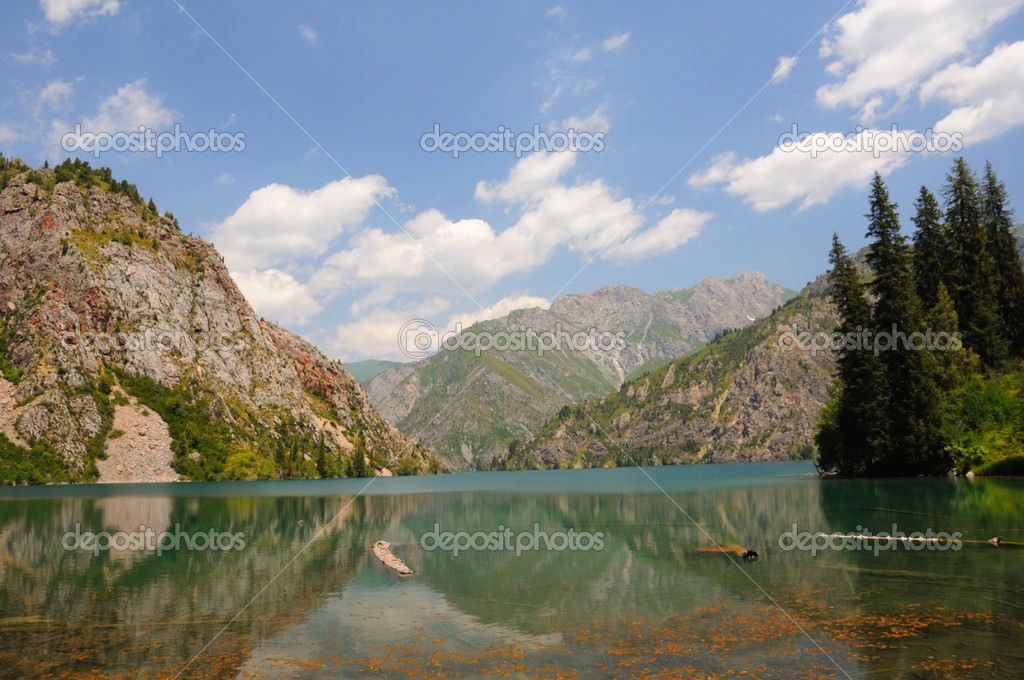 Colorful Sary-Chelek Lake with mountains and fur tree  Stock Photo #4152781