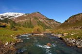 The mountain river in gorge — Stock Photo