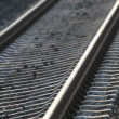 Railroad tracks. Rails — Stock Photo #4963623