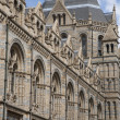 Stock Photo: National History Museum in London