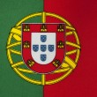 Flag of Portugal — Stock Photo #4248316