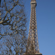 Eiffel Tower with Winter Trees - Foto de Stock