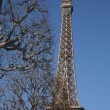 Eiffel Tower with Winter Trees - Lizenzfreies Foto