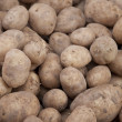 Potatoe Background — Stock Photo