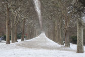 Tree Lined Path with Snow, Paris — Stock Photo