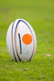 Rugby ball — Stock Photo