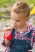 Malý chlapec s květinou — Stock fotografie