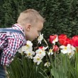 Stock Photo: Smelling flowers