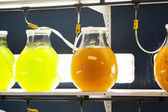 Bottles at the laboratory — Stock Photo