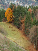 Alps in germany close to the village of oberstdorf in the fall — Stock Photo