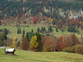 Alps in the fall with beautiful landscape in germany — Stock Photo
