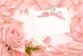 Invitation card with rose — Stock Photo