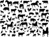 Animales de granja — Vector de stock