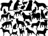 Perros y gatos — Vector de stock