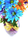 Daisy flowers in a vase — Stockfoto