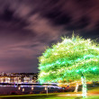 Stock Photo: Green tree illuminated