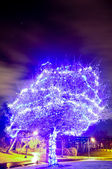 Blue tree illuminated — Stock Photo