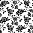 Black roses at white - 图库矢量图片