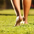 Legs on the grass — Stock Photo