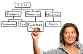 Young businesswoman presenting a business hierarchy — Stock Photo