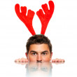 Stock Photo: Male reindeer