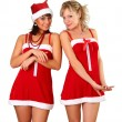 Stock Photo: Two beautiful women in christmas dress