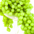 Green grape — Stock Photo