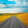 Stock Photo: Empty road