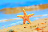 Starfish and sea wave on sandy tropical beach — Stok fotoğraf