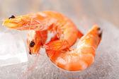 свежие креветки — Стоковое фото