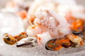 Seafood ingredients — Stock Photo