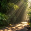 Stock Photo: Sunbeams