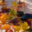 Wine & leafs — Stock Photo