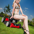 Pretty lawn mowing - Stock Photo
