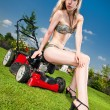 Pretty lawn mowing — Stock Photo
