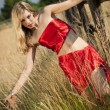 Stockfoto: Red summer