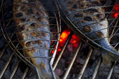Fish on grill — Stock Photo