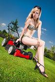 Pretty lawn mowing — Stock Photo