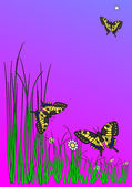 Three butterflies and five daisies and green grass — Stock Photo