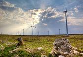 Paisaje de turbina de viento — Foto de Stock